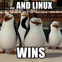 Madagascar Penguin - ... and linux wins