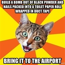 Bad Advice Cat - build a bomb out of black powder and nails packed into a toilet paper roll wrapped in duct tape bring it to the airport