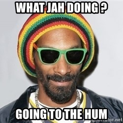 Snoop lion2 - What jah doing ? Going to the hum