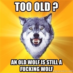 Courage Wolf - too old ? an old wolf is still a fucking wolf