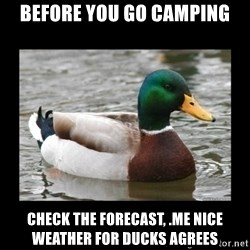 advice mallard - BEFORE YOU GO CAMPING CHECK THE FOReCAST, .me nice weather for ducks agrees