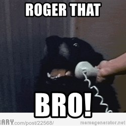 Hello This is Dog - roger that bro!
