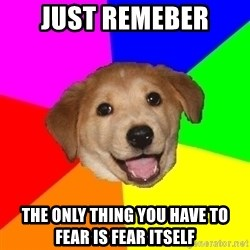 Advice Dog - just remeber the only thing you have to fear is fear itself