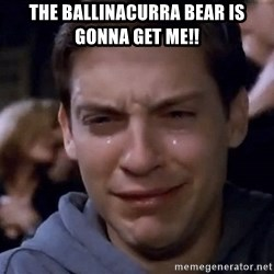 Crying Tobey Maguire1 - The Ballinacurra bear is gonna get me!!