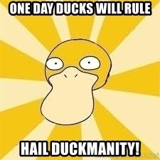 Conspiracy Psyduck - One day ducks will rule Hail Duckmanity!