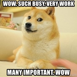 so doge - WOW. such busy. very work many important. wow