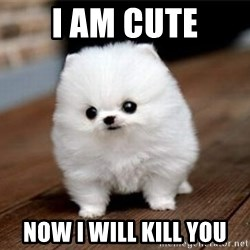 more meat for my duck - I am cute now i will kill you