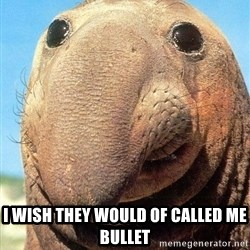 Lolwut -  I wish they would of called me bullet