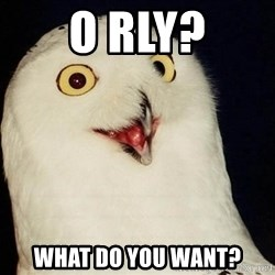 O Rly Owl - O Rly? What do you want?
