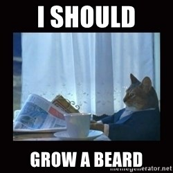 i should buy a boat cat - i should grow a beard