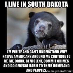 sad bear - I live in South Dakota  I'm white and can't understand why native americans around me continue to be fat, drink, be violent, commit crimes and do general harm to their homeland and peoples.