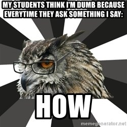 ITCS Owl - My students think I'm dumb because everytime they ask something I say: HOW