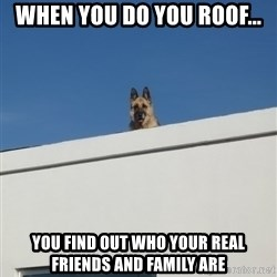 Roof Dog - When you do you roof... you find out who your real friends and family are