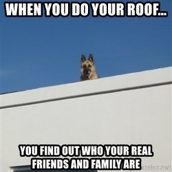 Roof Dog - When you do your roof... You find out who your real friends and family are