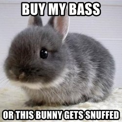 ADHD Bunny - Buy my bass or this bunny gets snuffed
