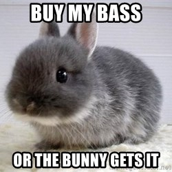 ADHD Bunny - buy my bass or the bunny gets it