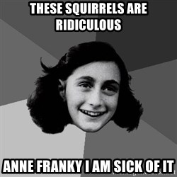 Anne Frank Lol - These squirrels are ridiculous Anne Franky I am sick of it