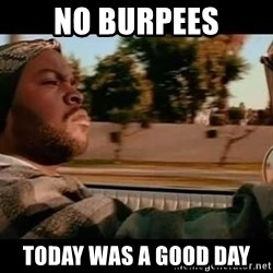 IceCube It was a good day - NO BURPEES TODAY WAS A GOOD DAY