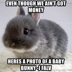 ADHD Bunny - Even though we ain't got money Heres a photo of a baby bunny -J Falv