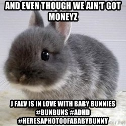 ADHD Bunny - And Even though we ain't got moneyz J Falv is in love with baby bunnies #BunBuns #ADHD #HeresAPhotoOfABabyBunny