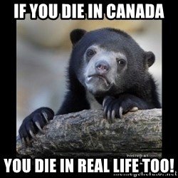 sad bear - If you die in Canada You die in Real Life Too!