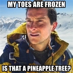 Kai mountain climber - my toes are frozen is that a pineapple tree?