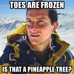 Kai mountain climber - TOES ARE FROZEN Is that a pineapple tree?