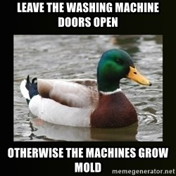 good advice duck - Leave the washing machine doors open otherwise the machines grow mold