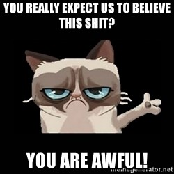 Grumpy cat pointing - You really expect us to believe this shit? You are awful!