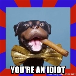 Triumph the Insult Comic Dog -  you're an idiot