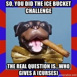 Triumph the Insult Comic Dog - so, you did the ice bucket challenge the real question is...who gives a (curses)