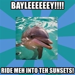 Dyscalculic Dolphin - BAYLEEEEEEY!!!! Ride meh into teh sunsets!
