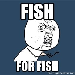 Y U No - fish for fish