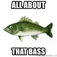 invadent sea bass - All About That Bass