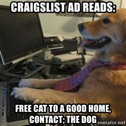 I have no idea what I'm doing - Dog with Tie - craigslist ad reads: free cat to a good home, contact; the dog
