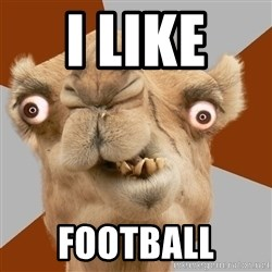 Crazy Camel lol - i like  football