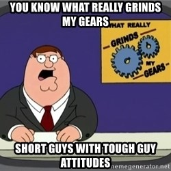 What really grinds my gears - You know what really grinds my gears short guys with tough guy attitudes