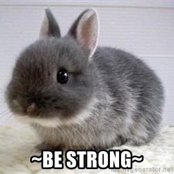 ADHD Bunny -  ~be strong~