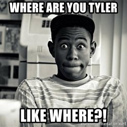 Tyler the Creator - Where are you Tyler  Like where?!