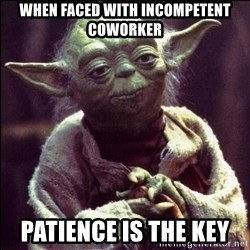 Advice Yoda - when faced with incompetent coworker PATIENCE IS THE KEY