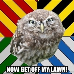 JEALOUS POTTEROMAN -  Now get off my lawn!