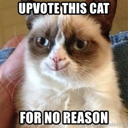 Happy Grumpy Cat 2 - upvote this cat for no reason