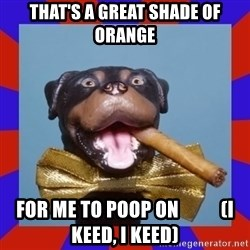 Triumph the Insult Comic Dog - That's a GREAT Shade of Orange for me to poop on           (I keed, I keed)