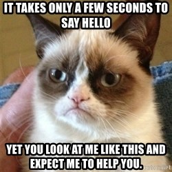 Grumpy Cat  - It takes only a few seconds to say hello yet you look at me like this and expect me to help you.
