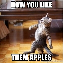 walking cat - how you like them apples