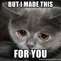 sad cat - but i made this  for you