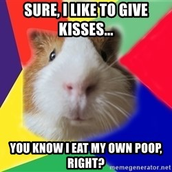 Typical guinea pig - Sure, I like to give kisses... You know I eat my own poop, right?