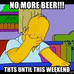 Homer Facepalm - NO MORE BEER!!! THTS UNTIL THIS WEEKEND