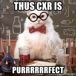 Chemist cat - Thus CXR is PURRRRRRFECT