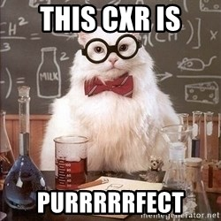 Chemist cat - This CXR is Purrrrrfect